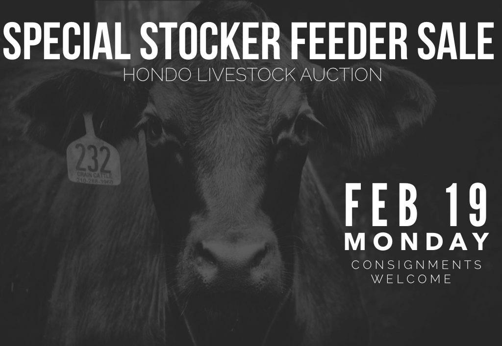 hondo livestock auction special sale