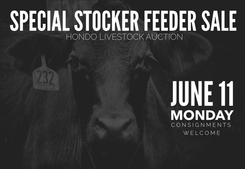 June 11, 2018 Special Livestock Sale, Hondo Livestock Auction