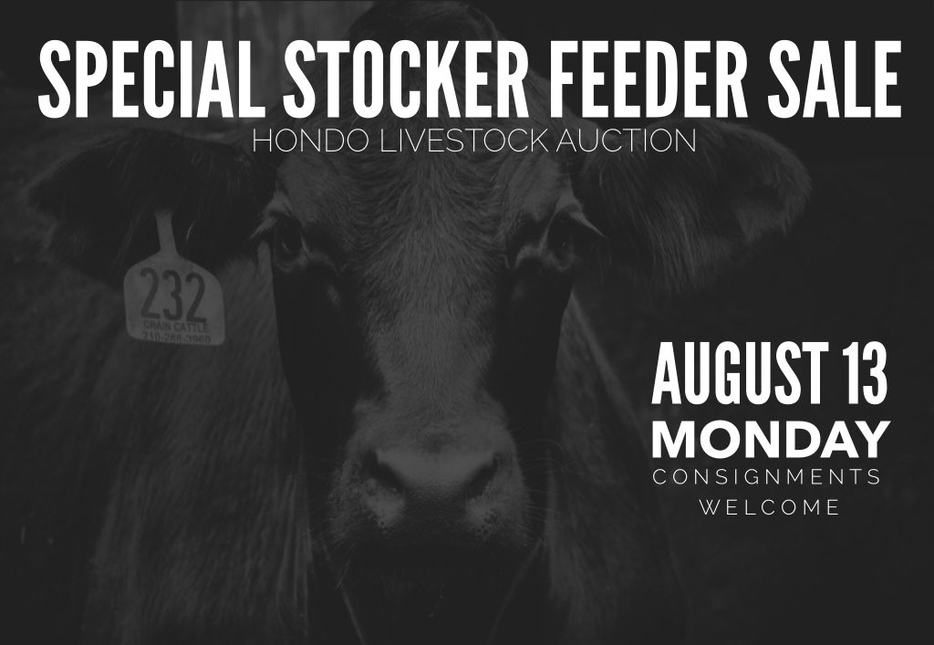 Hondo livestock auction special sale August 13, 2018