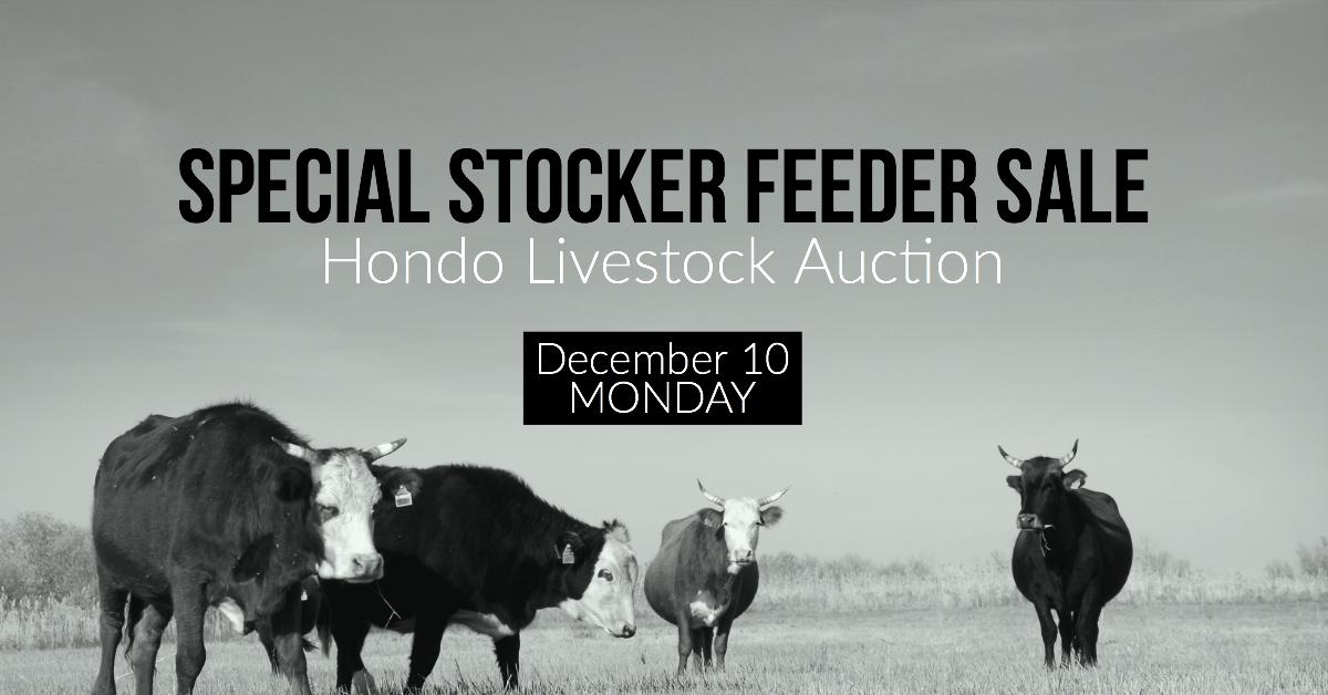 Special Livestock Sale Dec-10, Hondo Livestock Auction