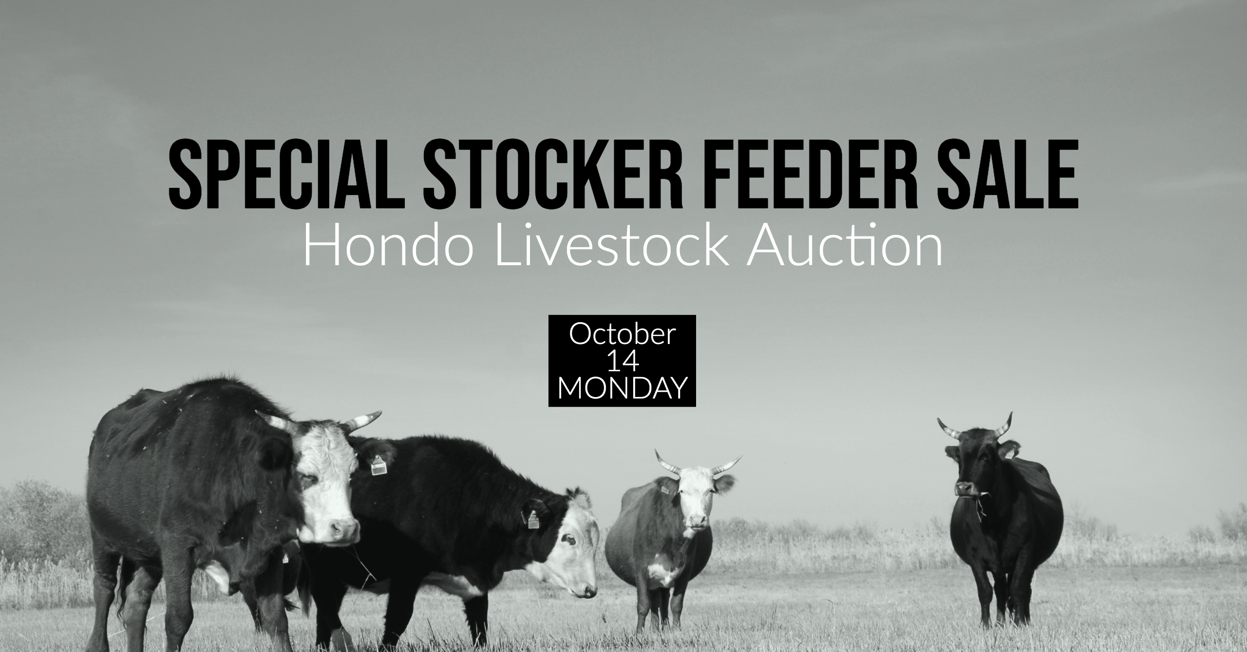 Hondo livestock Auction, Special Sale Date