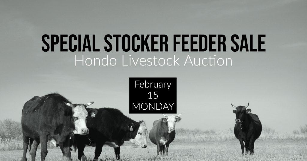 Special Livestock Sale, Hondo, Texas