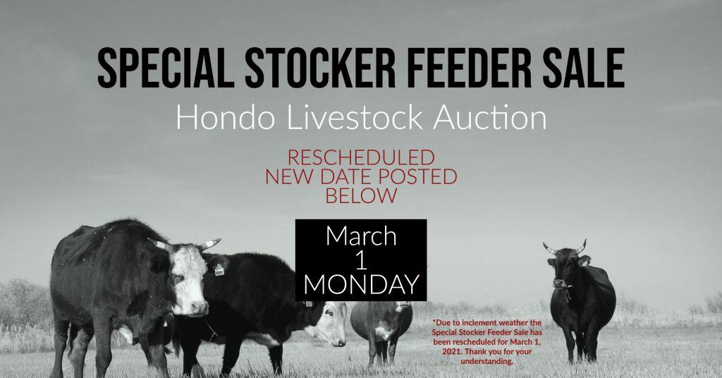 Special Livestock Sale, Cattle Auction, Hondo Livestock
